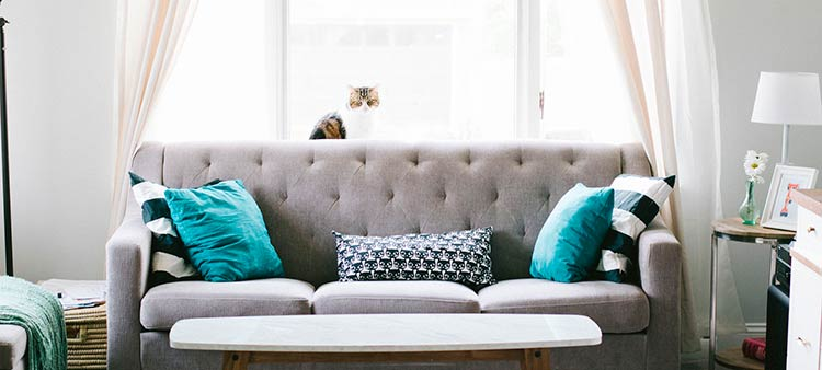 ¿Sabes cuáles son las coberturas más usadas en el seguro de hogar?